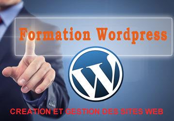 CRÉATION ET ANIMATION DE SITE WEB